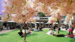 Read more about the article MITSUI OUTLET PARK 林口春季櫻花祭造景設計